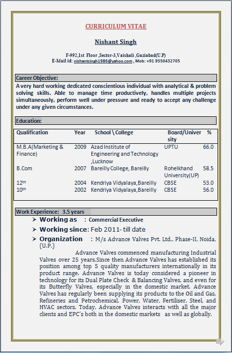 Marketing Director Resume Great Resumes Fast Account Manager Resume Example  Great Resumes Fast