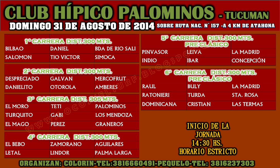 31-08-14-PROG-HIP. PALOMINOS