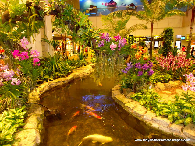 Orchid Garden Inside Changi Airport