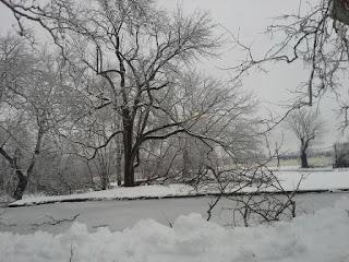 Pond_at_Graeme_Park_Feb_2014_from_Facebook