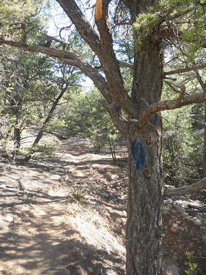 Burn Trail Santa Fe