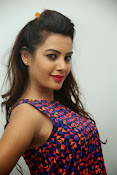 diksha panth sizzling photo shoot-thumbnail-13
