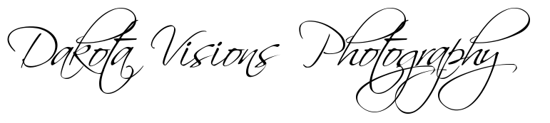 Top Free Handdrawn Fonts for Personal & Commercial Use #dakotavisions #scriptina