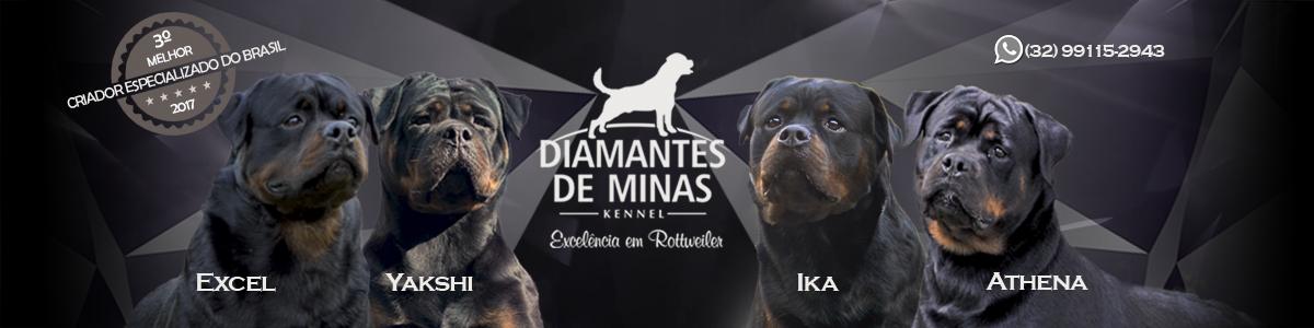 Diamantes de Minas - Kennel - Excelência em Rottweiler