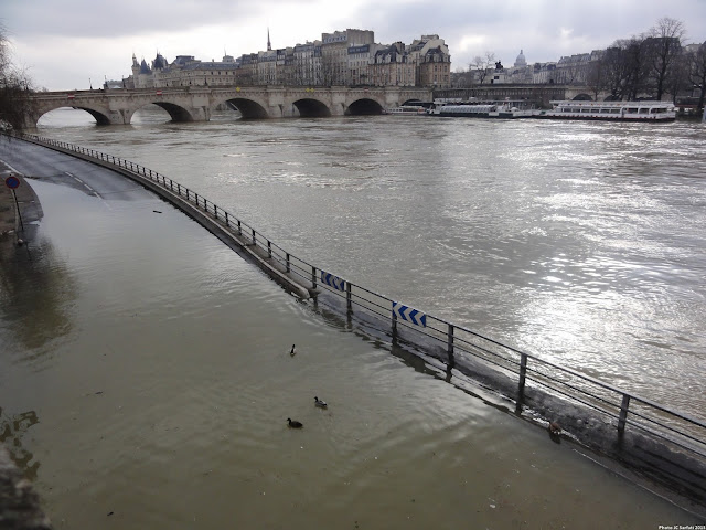 """Small flood in Paris, Island of """"La Cité"""""""