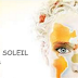 Cirque du soleil case analysis team 6 from jadrankas13