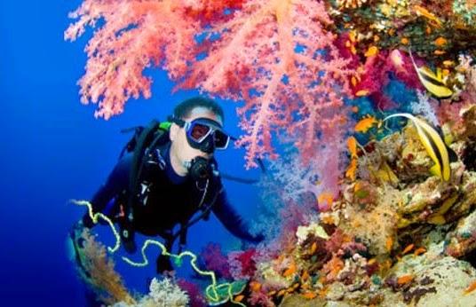 5* Luxury Maldives Liveaboard SAVE £500