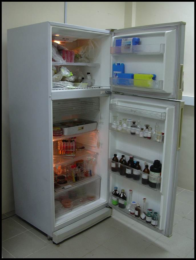 Culture and media storing refrigerators