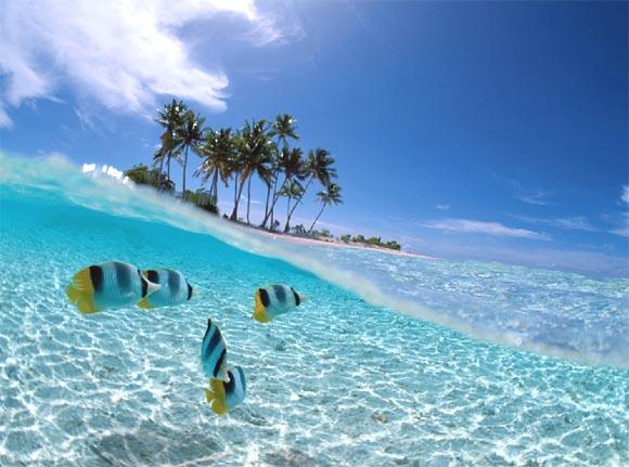 Wisata-Bahari-di-Indonesia.jpg