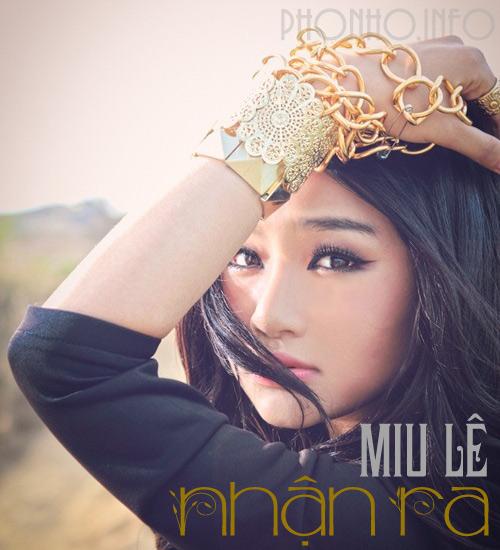 Cover dans Vietnam