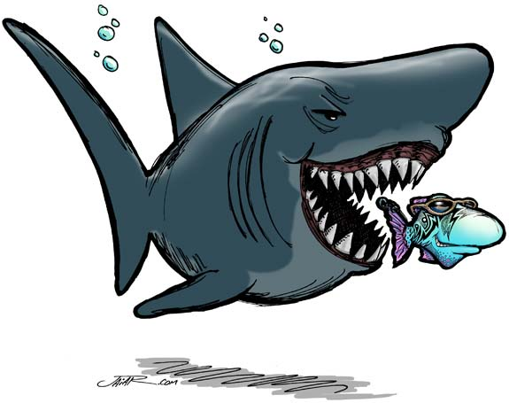 how to draw a shark eating a fish