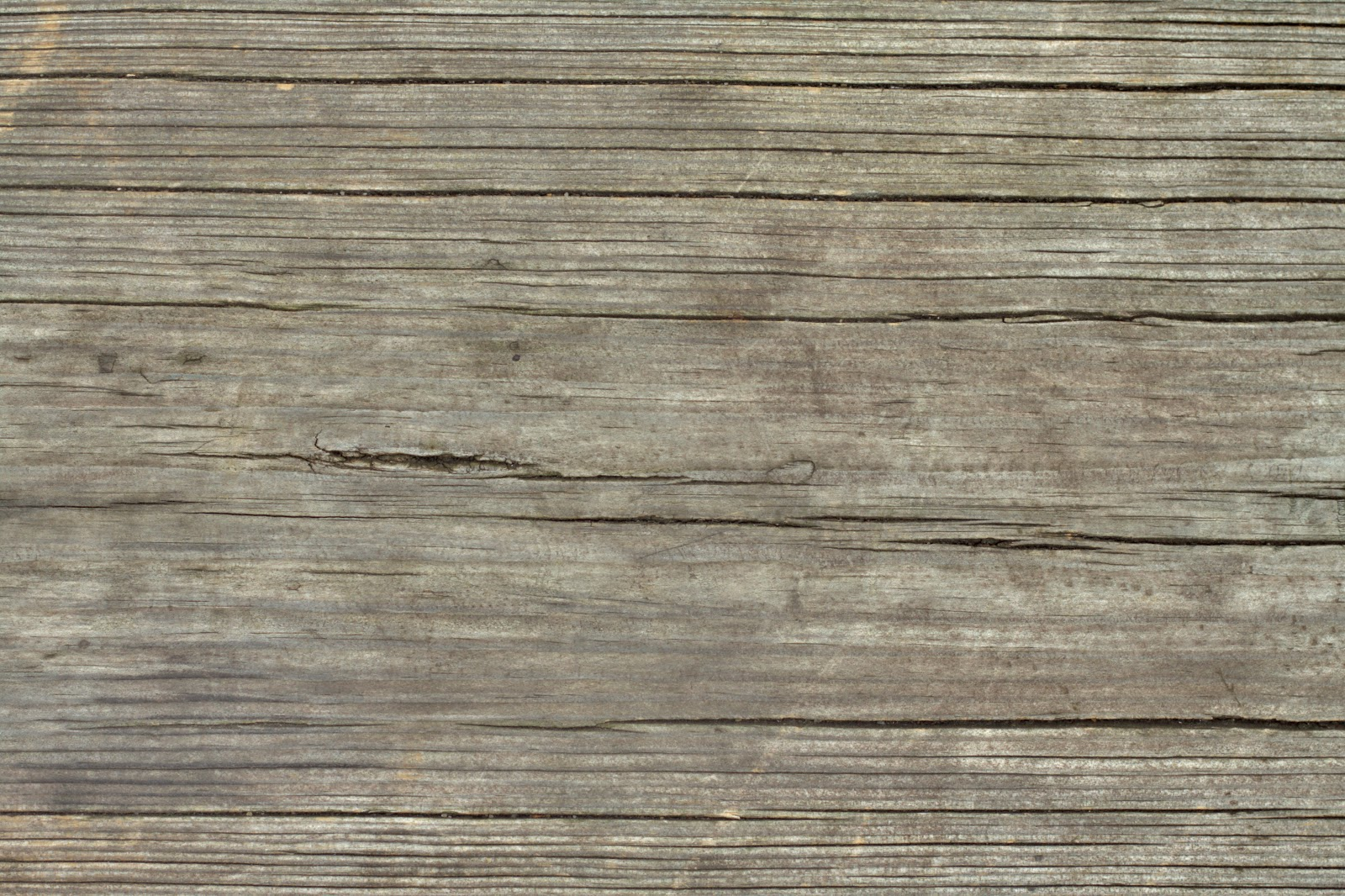 Wood dry cracked bench tree bark texture ver 4