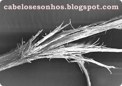 Chamado efeito vassourinha ou cabelo vassoura piaçava