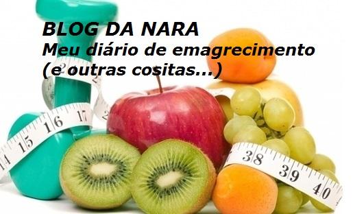 Blog da Nara