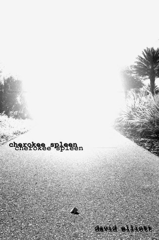 Cherokee Spleen by David Elliott | Book review www.thechroniclesofchaos.com