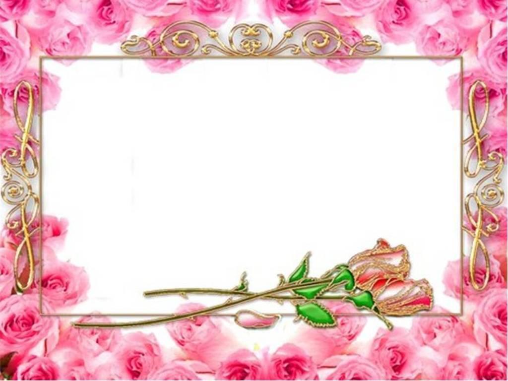 Pink Rose Border Frame