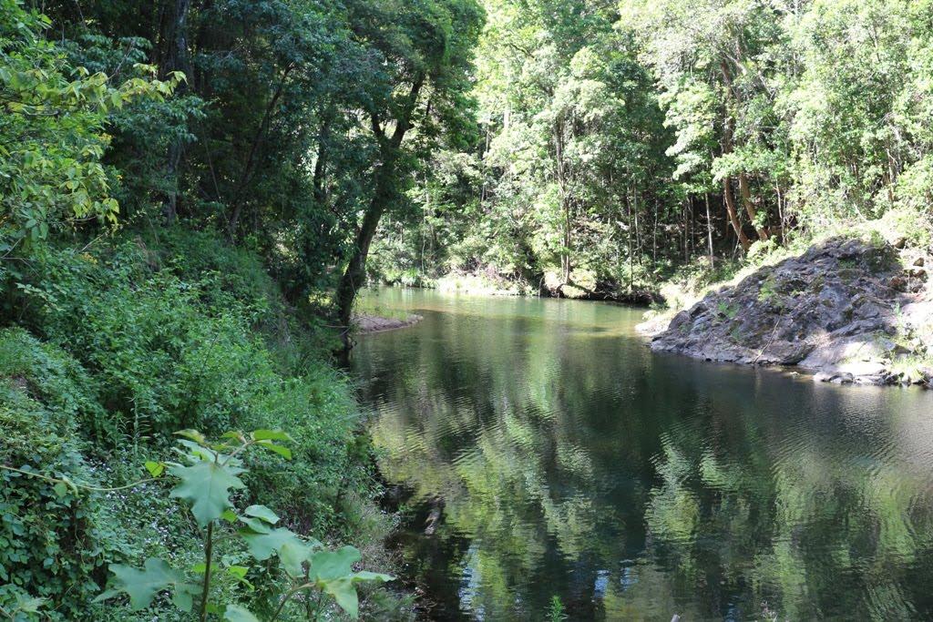 Amamoor creek
