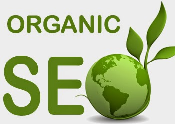 A Guide To Organic SEO And it is Rewards