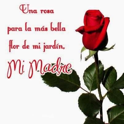 Frases De Feliz Día De La Madre: Una Rosa Para La Más Bella Flor De Mi Jardín