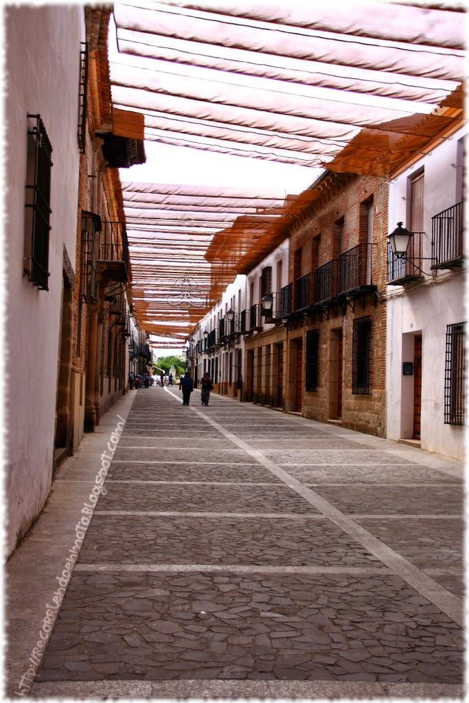 Calle Vva Infantes