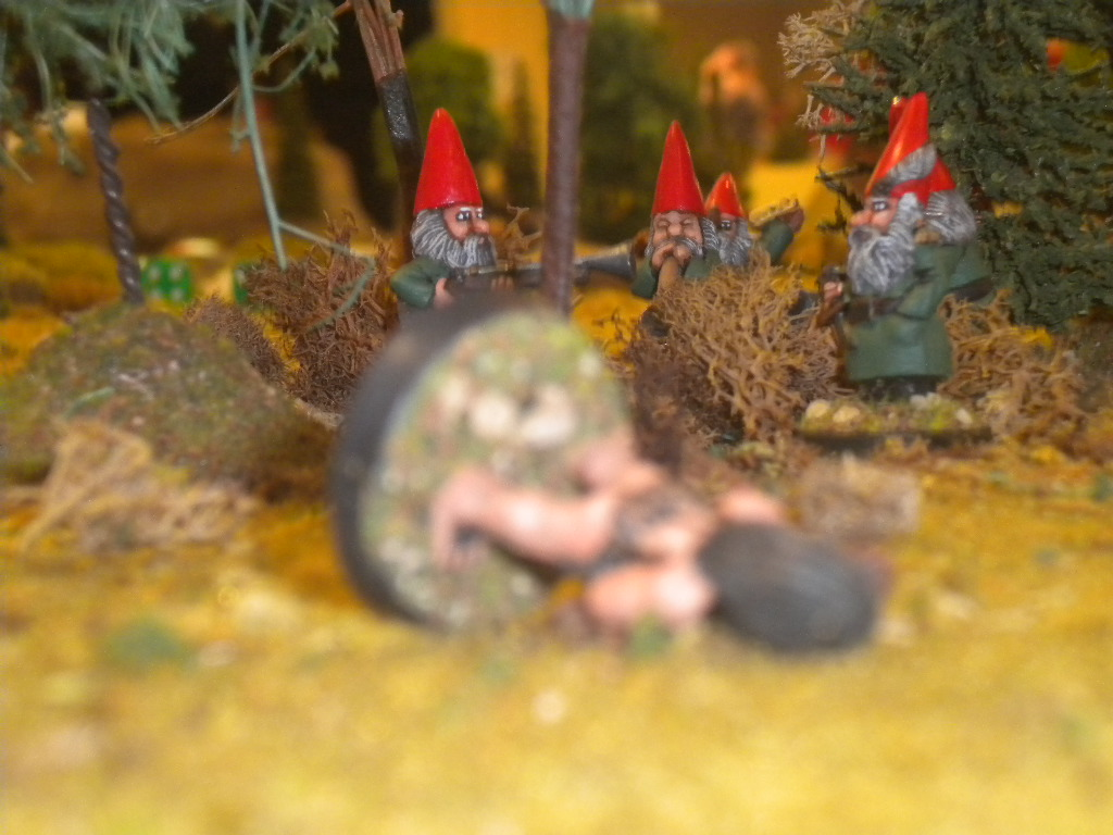Gaming with the Gnomies: November 2011