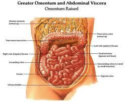 Homeopatie pentru diareea minorilor