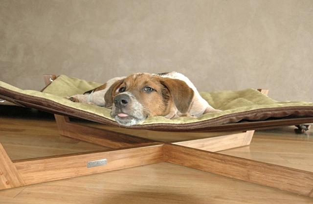 Raised Dog Beds For Sale Uk