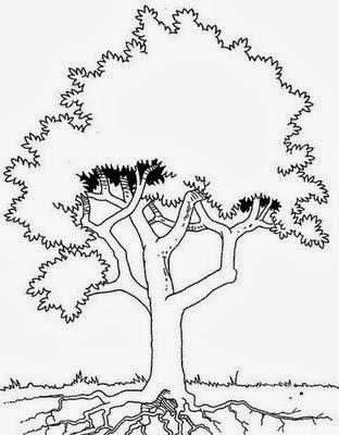atividades de alfabetização Árvore para colorir atividades de