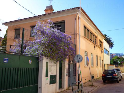 Casa museu mestre jo o da silva lisboa portugal - Happy casa mestre ...