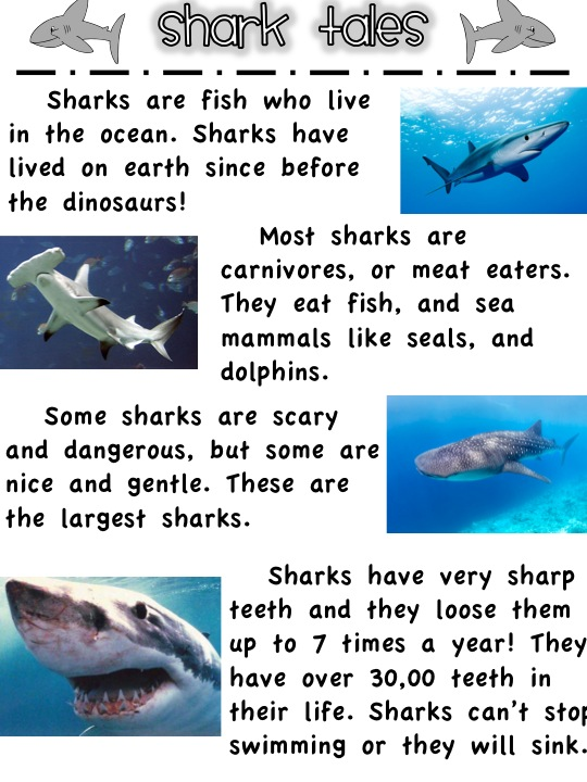 compare and contrast essay on sharks and dolphins Compare and contrast chart item #1 item #2 how are they alike how are they different readwritethink  title: comparecontrast created date: 1/4/2012 9:58:12 pm.