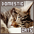 I like domestic cats