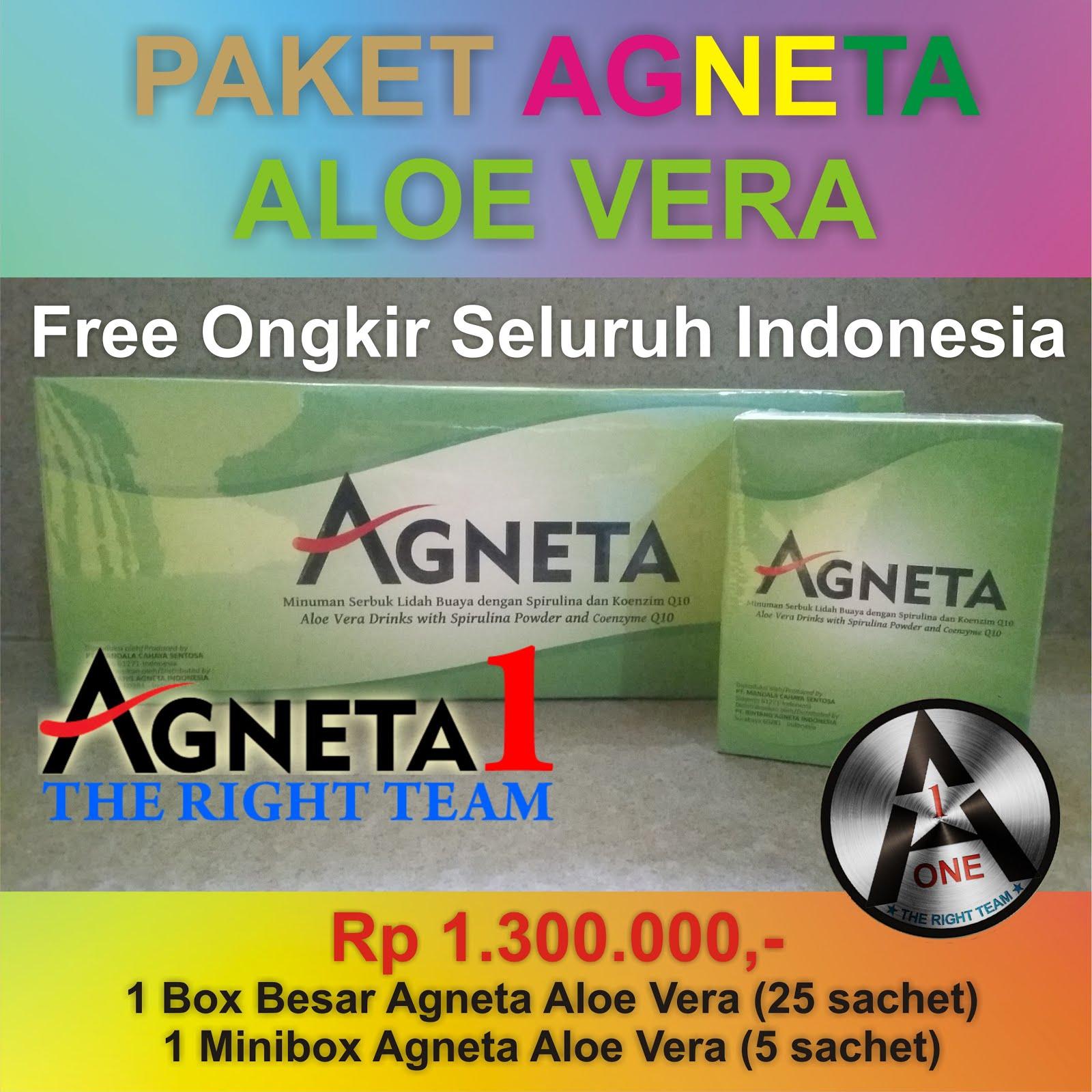 Paket Agneta Aloe Vera (Pelangsing)