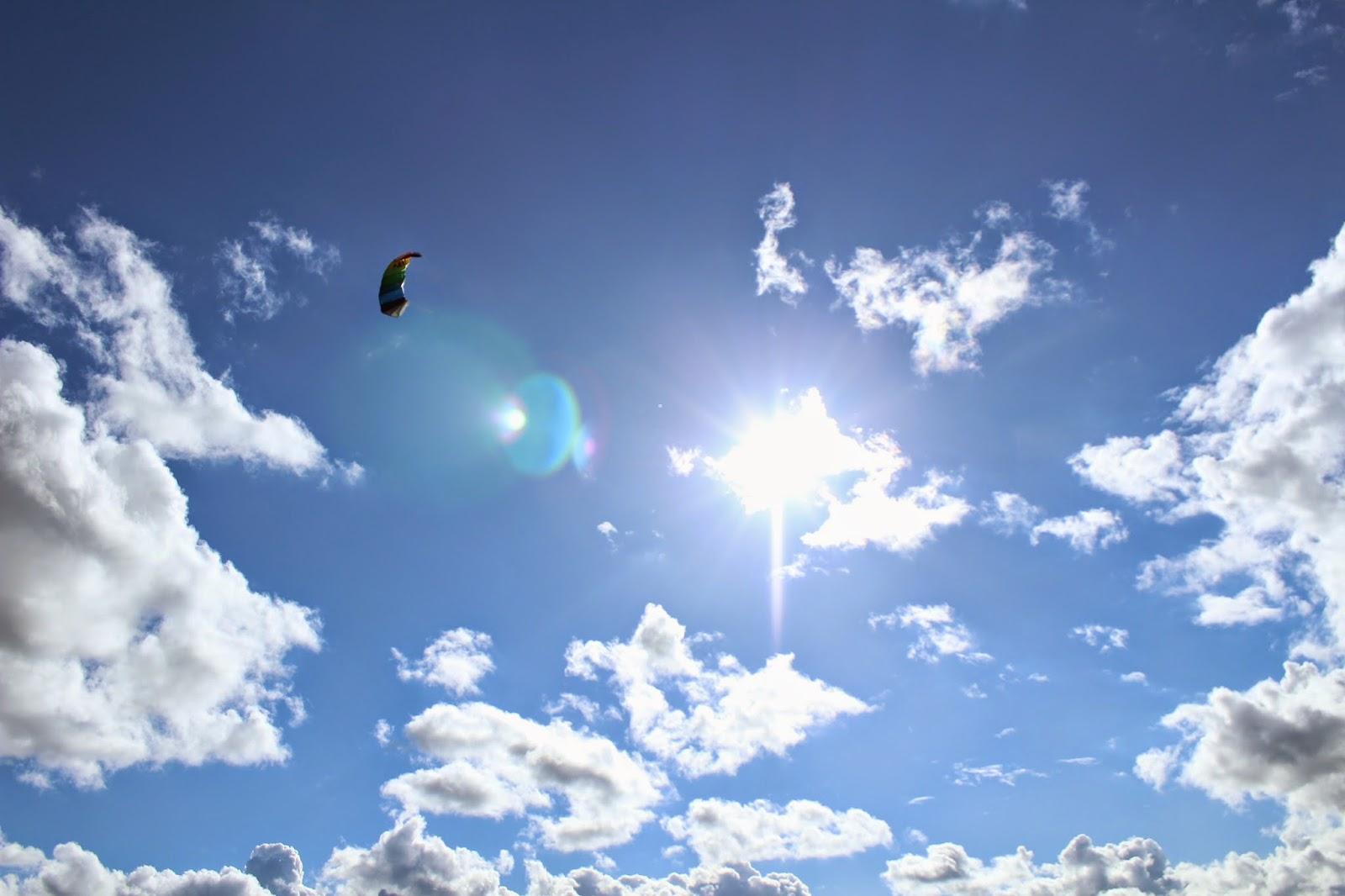 Sunny sky // 76sunflowers
