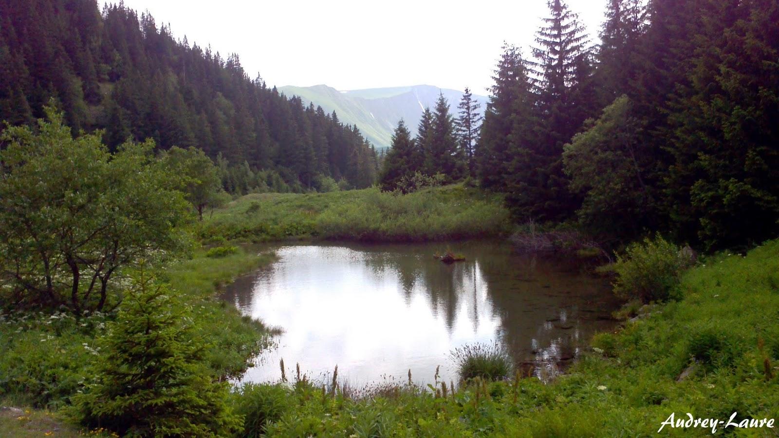 Lac de Prévourey