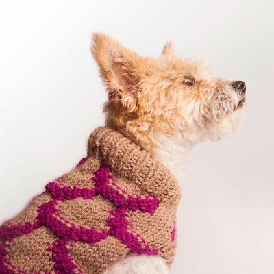 Jersey para perro modelo Japón Beige/Magenta