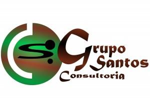 Grupo Santos Consultoria