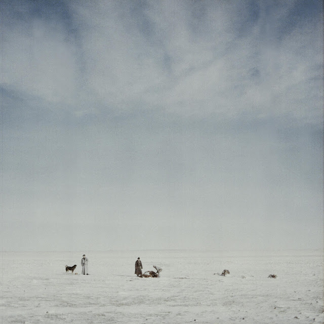 World Press Photo Contest 2015, Vida cotidiana, Daily Life, Mongolia Black Gold Hotel, Michele Palazzi