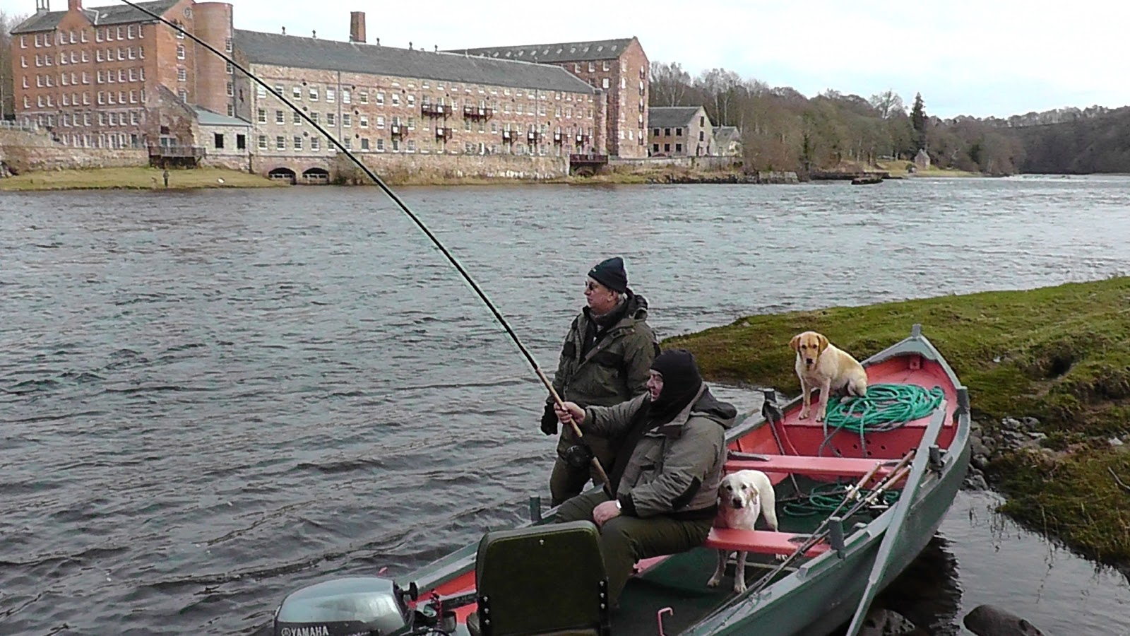 Salmon fishing scotland salmon fishing scotland catching for Salmon fishing colorado