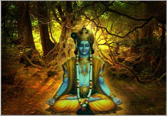 Bhagavad Gita The Practice Of Yoga