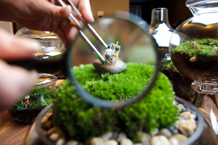 Minigarten Im Glas die-wohngalerie: wohnen in moos - der mini-garten für aussteiger!