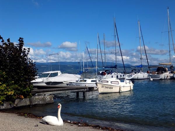 Yvoire Haute-Savoie bourg médiéval plus beau village de france lac léman