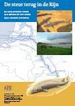 cover De steur terug in de Rijn : Atlantische steur als kroon op het werk aan levende rivieren
