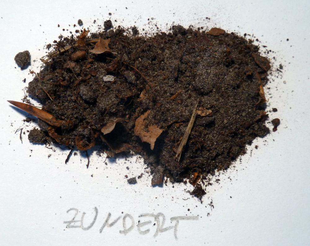 Humus resimli yemek tarifleri for Rich soil definition