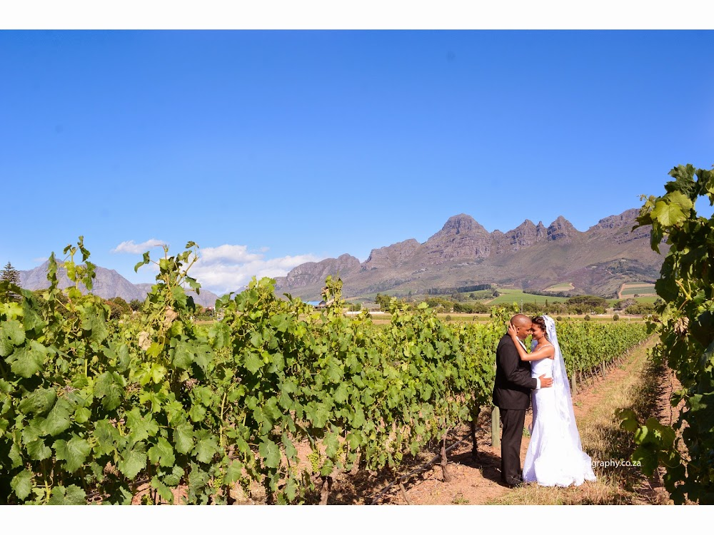 DK Photography 1st%2BBLOg-14 Preview ~ Lawrencia & Warren's Wedding in Forest 44, Stellenbosch  Cape Town Wedding photographer