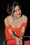 Shilpi Sharma Photos at Green Signal Audio-thumbnail-1