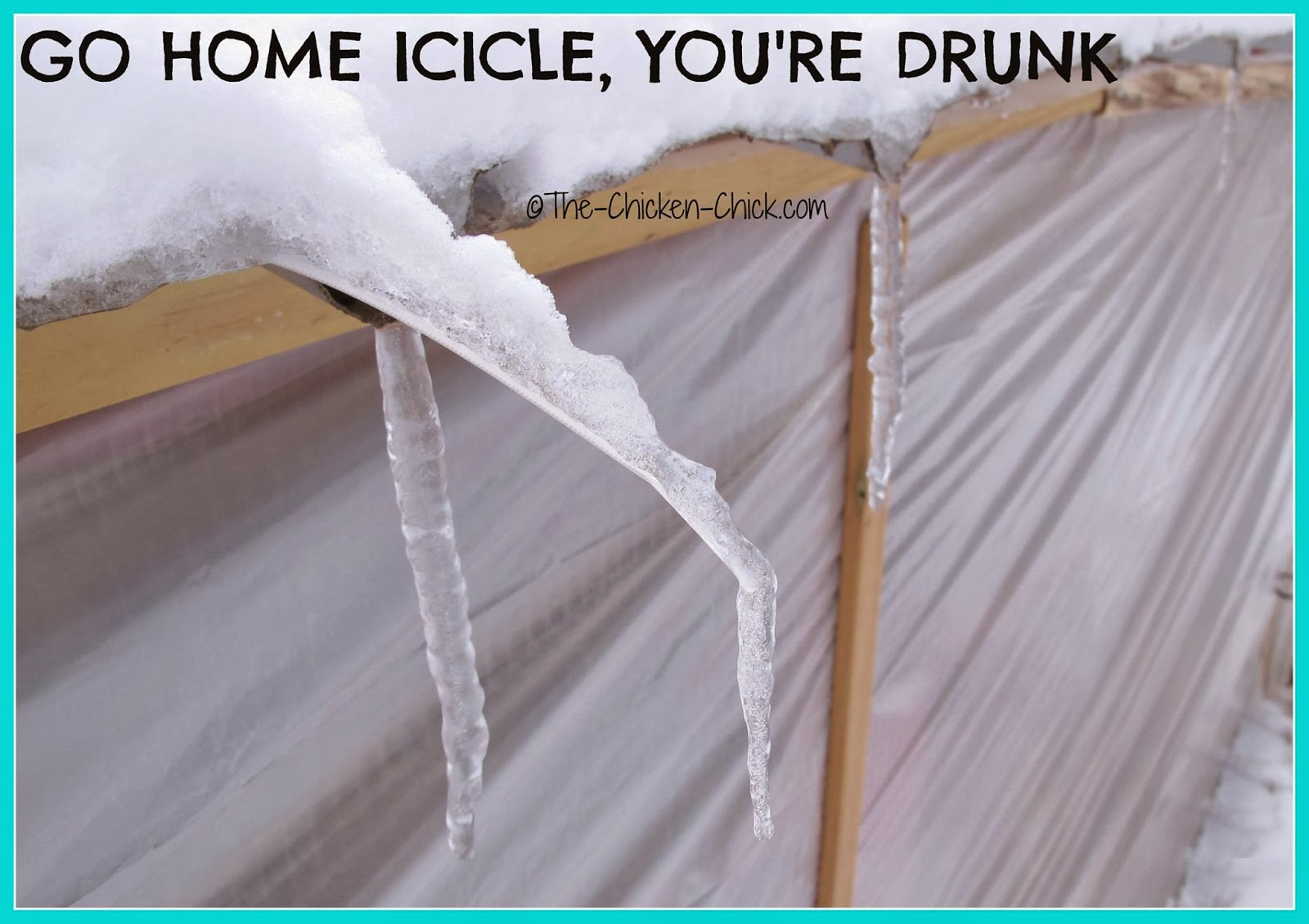 Go home icicle, you're drunk.