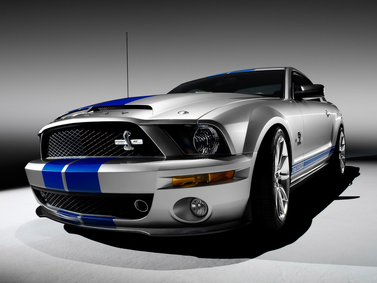 Ford mustang shelby gt500 pictures beautiful cool cars - Mustang shelby ...