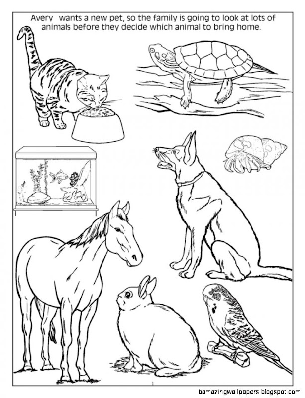 Dog And Cat Coloring Pages   Cute Drawing Kids