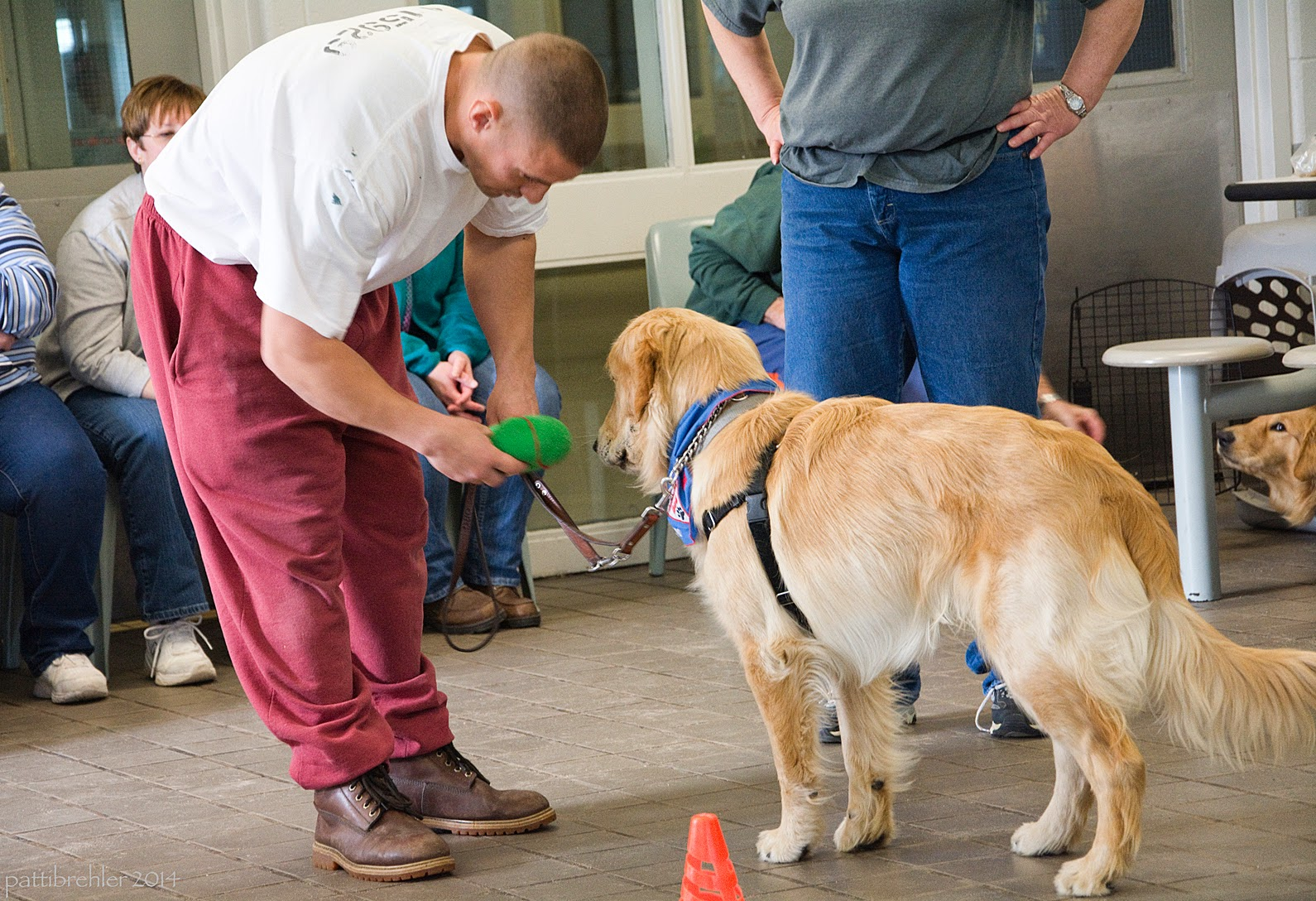 A man dressed in maroon sweat pants and a white t-shirt is bending over toward a golden retriever that is standing in front of him, facing him and away from the camera. The man is holding out a green plush toy to the puppy and holding the dog's leash with his left hand. The puppy is wearing the blue Future Leader Dog bandana and a black body harness. There is an orange cone just visible in the foreground. There are three women sitting in the background but not quite visible, and the woman in jeans and a grey t-shirt with her hands on her hips standing behind the dog, but she is only visible from her shoulders down.