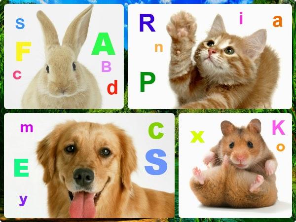 Nombres originales y bonitos para mascotas
